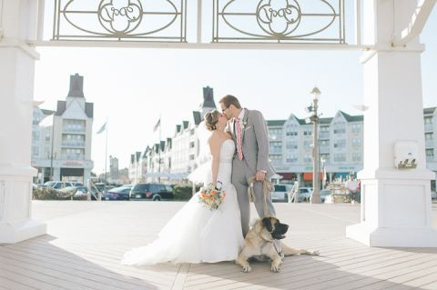 Bride and groom pose with their dog at their wedding at McLoone's Pier House in Long Branch, NJ. Captured by NYC wedding photographer Ben Lau.