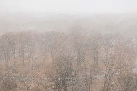 View of Central park from the Essex House in NYC. Captured by NYC wedding photographer Ben Lau.
